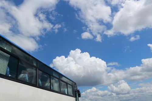 写真:屋形船で優雅な夕食&豊洲・銀座・浅草・迎賓館・横浜1泊2日ツアー